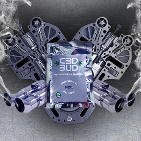 CBD BUD Diesel