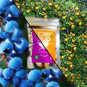 CBD BUD Orange Berry